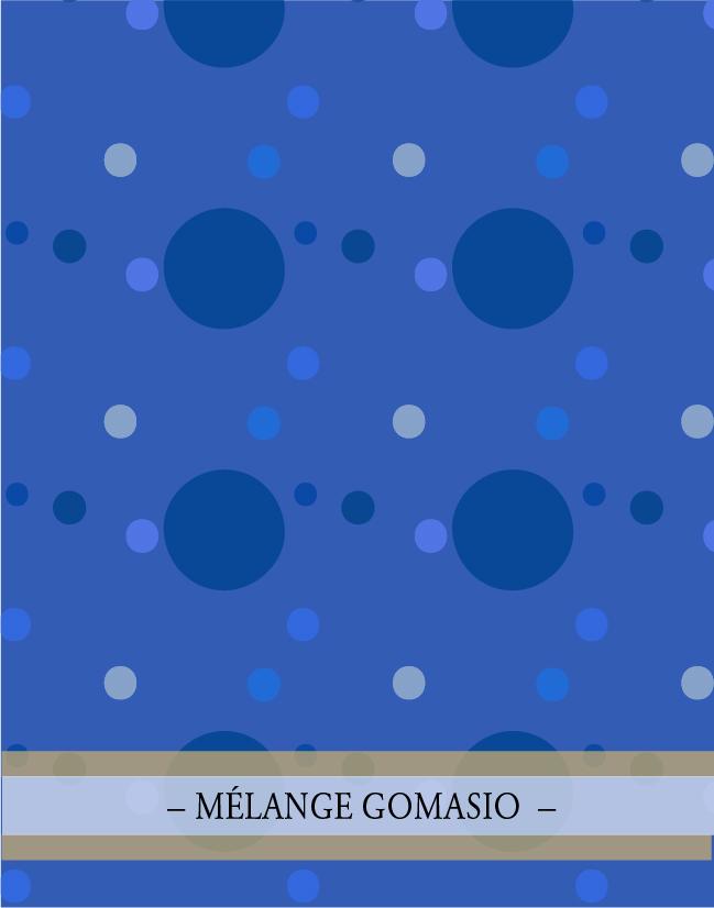MÉLANGE GOMASIO. Le mélange d'épices de la collection Japon par lasphereculinaire.ca