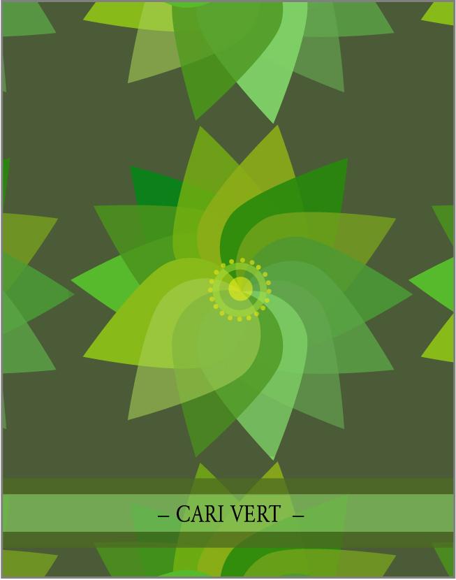 CARI VERT. Un des  4 mélanges  d'épices  de la collection Inde par lasphereculinaire.ca