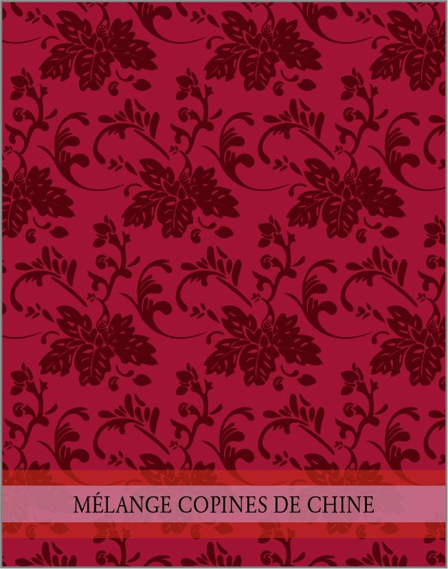 MÉLANGE COPINE DE CHINE. Un des  4 mélanges  d'épices de la collection Chine par lasphereculinaire.ca